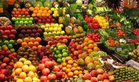 توزیع میوه های تنظیم بازار از اواسط اسفند