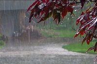کاهش ۷درصدی بارش ها نسبت به سال گذشته