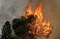 سود آتشسوزیهای طولانی به جیب چه کسانی میرود؟