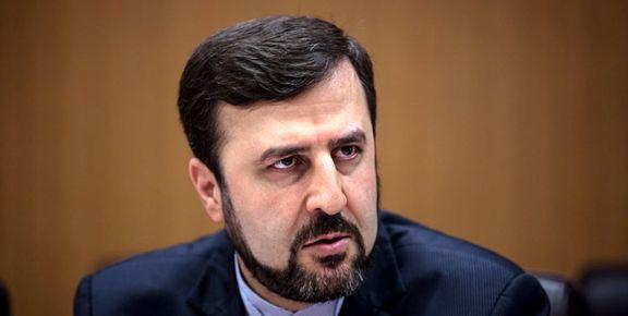 نظر ایران درباره گزینههای تصدی مدیرکلی آژانس بینالمللی انرژی اتمی
