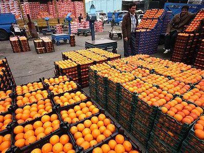 خرید تضمینی پرتقالهای سرمازده کیلویی ۵۰۰ تومان