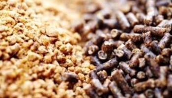 کاهش وابستگی به واردات خوراک دام و طیور