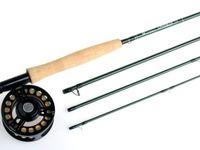 واردات ۹تن چوب ماهیگیری به کشور
