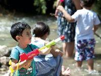کودکان آزاد در مدرسههای سبز
