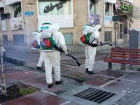 منع پاشیدن مواد ضدعفونیکننده به کف خیابان و درختان