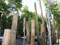 عزل یک مقام شهرداری تهران بابت قطع درختان