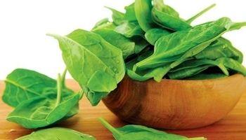 منابع گیاهی حاوی آهن را بشناسید