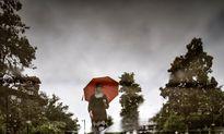 بارش در ۵استان بیش از ۵۰درصد کاهش دارد