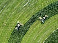 توسعه فناوری نانو درحوزه کشاورزی و منابع طبیعی تسهیل میشود