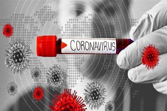 محققان آمریکایی نخستین واکسن کرونا بر نمونه انسانی را آزمایش کردند
