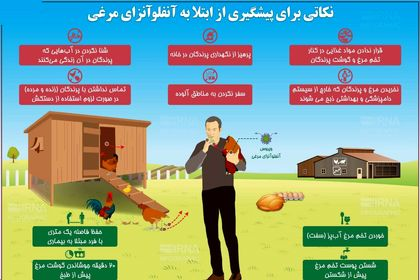 نکاتی برای پیشگیری از ابتلا به آنفلوآنزای مرغی +اینفوگرافیک