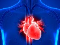 رگهای خونی در زنان زودتر پیر میشوند یا مردان؟