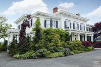 خانهای با ۲ میلیون دلار درخت +عکس