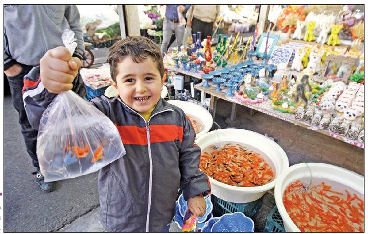 مصونیت ماهی قرمز از کرونا