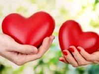 رمزگشایی از زندگی زوجین خوشبخت