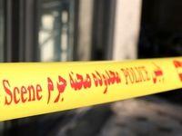 جزئیات قتل مادر و دختر نوجوان در بلوار فردوس