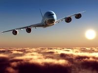 رفتار فوق العاده خطرناک مرد در فرودگاه +عکس