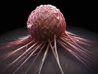 تاثیرآنتی اکسیدانها در تسریع پیشرفت سرطان