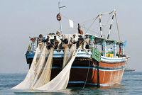 خودداری از چرای دام در کنار رودخانهها تا صیادی در دریای عمان