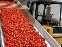 گران فروشی رب گوجه با مجوز سازمان حمایت؟