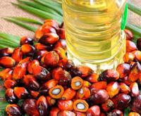 کاهش تعرفه واردات روغن خوراکی پرطرفدار در هند