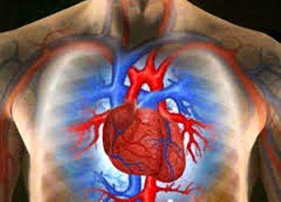 شیوع بیماری های قلبی در کشور