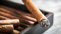 سیگاریها مستعد ابتلا به کرونا