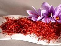 افزایش ۳۳درصدی صادرات زعفران / صادرات ۱۲۳میلیون دلاری زعفران در ۵ماه