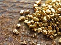 ریسک بالای خرید طلای آبشده/ بازار طلای آبشده غیرقانونی است