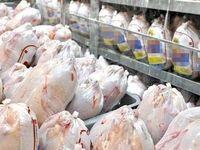 صادرات مرغ زنده تا ۱۰روز آینده آزاد شد