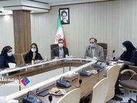 وبینار مشترک صندوق بازنشستگی کشور و بیمه ملت برگزار شد