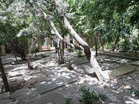ایجاد 10هزار قبر جدید در بهشت زهرا