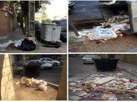 توضیح شهرداری منطقه1 تهران در خصوص وضعیت سطلهای زباله