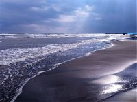 نهنگ آبی ۳جوان را در دریای خزر بلعید! +تکذیبیه