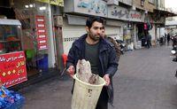 گشت تعزیرات در بازار مرغ و ماهی تهران +تصاویر