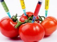 نظر وزیر بهداشت درباره محصولات تراریخته