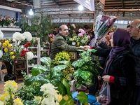 بازار خرید گل و گیاه در آستانه نوروز +عکس