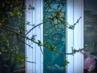 اثرات ازدواج فامیلی در روستاها +تصاویر