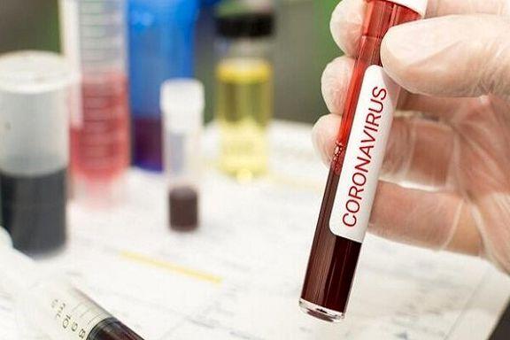 جهش ویروس کرونا ساخت واکسن را کند میکند
