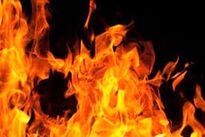 آتشسوزیهای گسترده در جنگلهای آمازون +فیلم