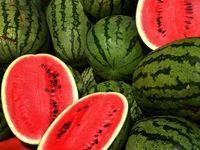 قطر هندوانه ایرانی را کیلویی چند میخرد؟