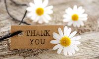 تاثیر قدردانی از دیگران در زندگی