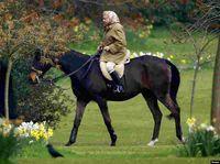 مشهورترین زنان دنیا در حال اسب سواری +تصاویر