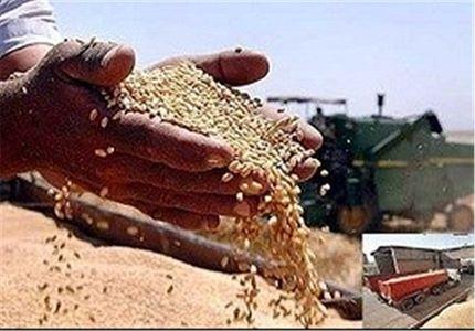 نرخ خرید تضمینی 25 محصول کشاورزی +جدول