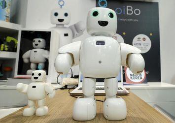 کنگره جهانی موبایل، The home-use social robot piBo