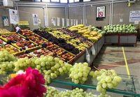 قیمت عمده فروشی انواع میوه در بازار