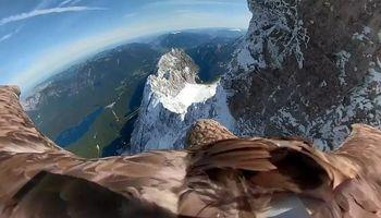 عقابها هنگام پرواز رشته کوه آلپ را چگونه میبینند؟ +فیلم