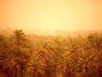 چاره ریزگردهای خوزستان چیست؟