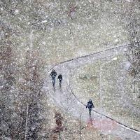 بارش برف سنگین در بلاروس +عکس