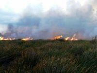 بازگشت آتشسوزی عمدی به هورالعظیم